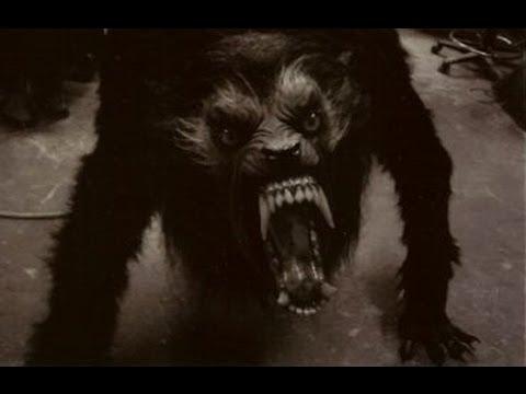 Vendredi 11 Mars - Loup garou de Thiercelieux